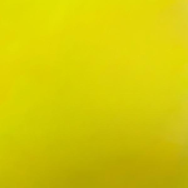 adhesive_chameleon_color